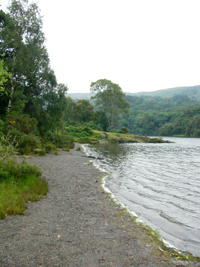Near foot of Coniston Water